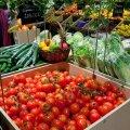 Sööte GM-toitu iga päev ja kiidate takka, aga ise olete kategooriliselt vastu