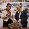 """""""Kui meie külarahvas oskab juba tomateid kasvatada, küllap nad siis ka kartuliga toime tulevad,"""" on lootusrikas Shianda küla esindaja Esther Mumia. Viive Rosenbergi abiga saaks edendada kartulikasvatust."""