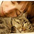 Omaniku pea juures on kassil soe ja turvaline magada.