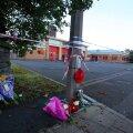 Briti politsei vahistas autoga naise tapnud ja 13 inimest vigastanud mehe