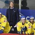 Rootsi hokimehed ja peatreener