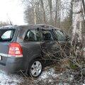 DELFI FOTOD: Järvamaal kaldus Opeli juht vastassuunavööndisse ja sealt edasi vastu puud