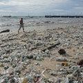 Популярные пляжи Бали превратились в мусорные свалки
