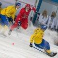 Bandy World Championship 2015. Russia vs. Sweden