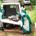 Lääne-Aafrika riigid võtsid vastu ühise strateegia võitluseks ebola vastu