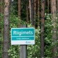 Riigikontroll hindas metsanduse arengukava jätkusuutmatuks