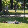 В Таллинне установлен новый температурный рекорд этого дня — 30,9 градуса!