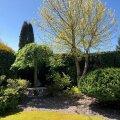 В Хааберсти впервые выбрали самые красивые сады района