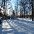 Leili metsalood   Olen hakanud sügava lumega talveaega pelgama