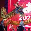 Hiina uus aasta Tallinnas Vabaduse väljakul, jaanuar, 2020