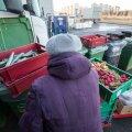 """Toiduküllus – hea ajastuse puhul võib mõne kaupluse juures tekkida võimalus võtta toidukraami ilma prügikasti """"vahepeatuseta""""."""