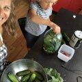 Eduka looduskosmeetikasarja HOIA homespa looja Triinu Karolin kasvatab kogu toidu perele ise: ainult nii saan kindel olla, et toit on täiesti puhas