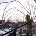 Salaja Eestisse tulla kavatsenud sudaanlast ähvardab Venemaal vangla