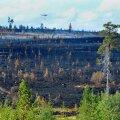Suurimad metsapõlengud toimusid Rootsi keskosas, kus asub ka pildil kujutatud Älvdaleni vald.