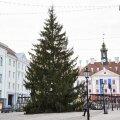 Tartu jõulupuu