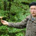 Миколог рассказал, почему не стоит есть лисички и какие грибы самые питательные