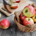 KUULA SAADET Toidujutud | Milline Eesti õun on eestlaste lemmik juba aastaid?