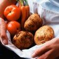 Foodart — võimalus väiketoidutootjale ja toitlustajale
