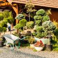 Müügil on istikuid ja aiakaupu.
