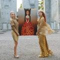 """К 8 марта арт-проект """"Душа женщины!"""" представит в Нарве картины, которые можно носить"""