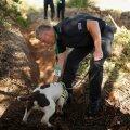 Politseinik juhendab väljakaevamisel koera
