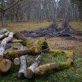 Jäljed Loode tammikus ja roopad Loodenina-poolses metsas.
