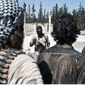 USA palus Soomelt, Rootsilt ja Norralt lisaabi ISIS-ega võitlemiseks. Eesti analüüsib samuti oma välismissioonide plaani