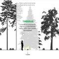 INTERAKTIIVNE GRAAFIK | Vaata, kuidas noor mets pärast erinevaid raieid kasvab!