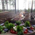 MINU ÄRI | Restoran, mis avab uksed metsas