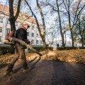 Lehekoristus Tartus Emajõe-äärses pargis käib lehepuhurite ehk õhuluudadega. Kui korraga töötab nendega mitu meest, muutub müra väga häirivaks.