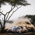 Autoralli MM-sarja valitseja Sébastien Ogier sai Keenia keerulistes oludes väga hästi hakkama.
