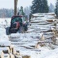 Metsa mahavõtmine