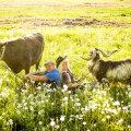 Ande ja Ženja päikeseline maailm. Foto: Kristjan Lepp