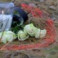 Õnnetuspaigale toodud lilled 2013. aasta novembrikuus