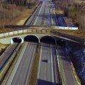 VIDEO: Kuidas ehitada ideaalset ökodukti? Eksperdid selgitavad