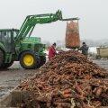 Tootmine Kadarbiku talus