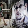 Ханс Х. Луйк: Американская разведка — мощнее президента и суда, или Чем полезен Сноуден