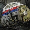 Bellingcat: есть новая фотография российской установки, сбившей MH17