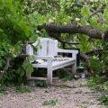 6 nõuannet, kuidas kodu ja vara sügistormide eest kaitsta