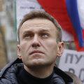 A. Navalnõi