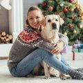 Seitse võimalust alustada jõulukuud loomasõbralikult