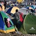 Kreekasse on lõksu jäänud 45 000 põgenikku, Makedoonia provintsi kuberner kutsub välja kuulutama eriolukorda