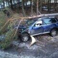 Naine sõitis maasturiga maha mitu puud