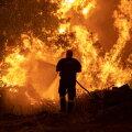 Tuletõrjuja võitlemas maastikupõlenguga Kreekas. ÜRO teadlased hoiatavad, et see on alles algus.