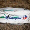 Holland lükkas tagasi Venemaa taotluse lennu MH17 allatulistamise süüaluste üle ise kohut mõista