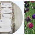 """Geniaalne disain — lilleseemneid sisaldav kaitsemask, mille saad peale kandmist aeda """"kasvama"""" panna"""