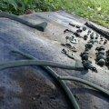 FOTOD: Kõuelt leiti järjekordne viikingiaegne aare
