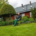 Reet Palusalu koduõues, jalad loomulikult Inglise murul. Kui oleks aega, niidaks ta seda rohelist vaipa veel tihedamini.