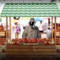 Pestitsiide, mida Eesti maasikatest leiti, ei ole lubatud Eesti maasikakasvatuses üldse kasutada.