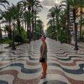 Anna Hispaanias Alicantes